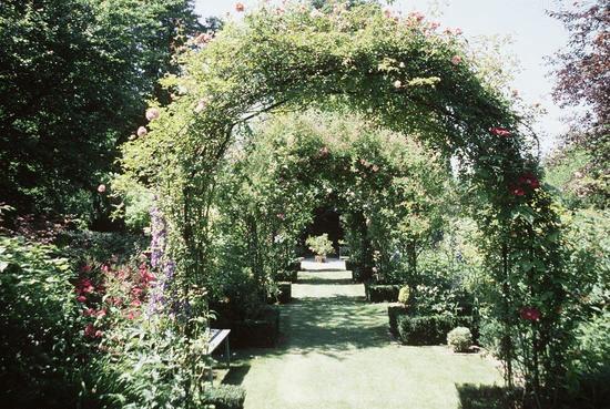 Dans la jungle de mon jardin au clos alexandre amiens for Alexandre jardin le roman des jardin